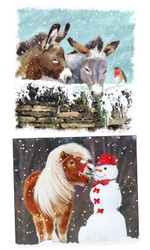 Donkeys and Pony in the Snow Christmas Cards