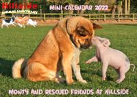 Hillside 'Monty and Friends' 2022 Mini Calendar