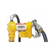12 Volt Cast Iron Pump