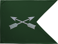 Special Forces Guidon Framed 08x10