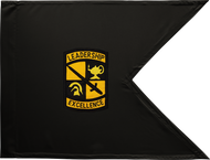 ROTC Guidon Black and Gold Framed 08x10
