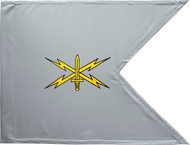 Cyber Corps Guidon Framed 24x31