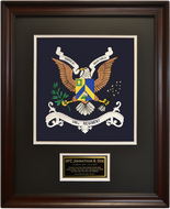 346th Regiment Framed 16x20