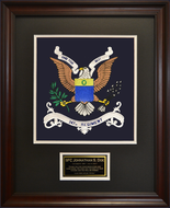 347th Regiment Framed 16x20
