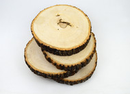 Basswood Round Thick Large Seconds 4pk