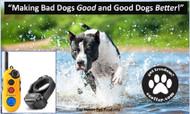 EZ-900 Easy Educator 1/2 Mile 1 (one) Dog Training System