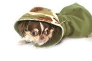 CAMO  Reversible Raincoat