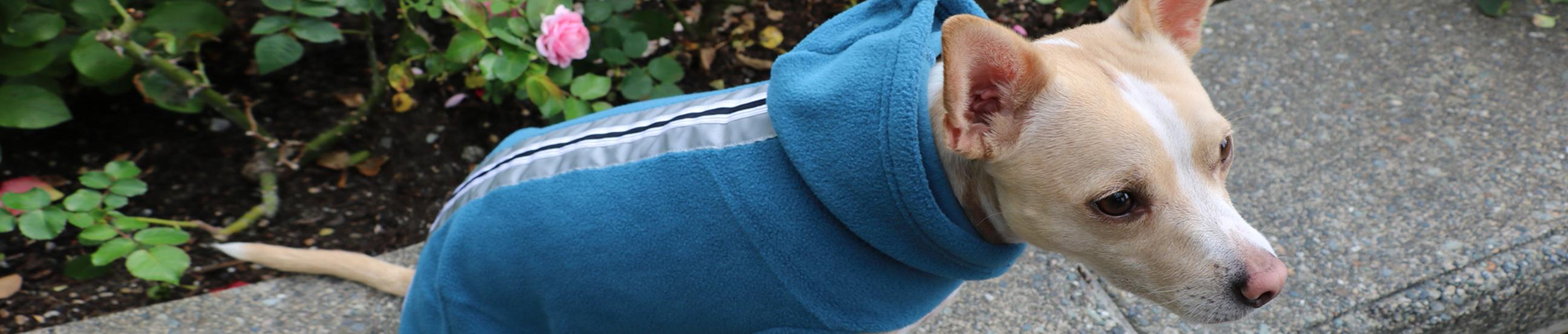 No Pull Comfort Reflective Dog Harness