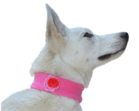 Stylish Dog Neck Warmer