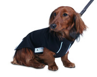 Quality Softshell Dog Coat