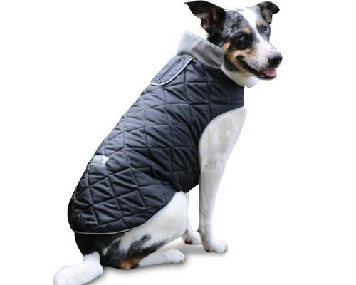 Reversible EcoResponsible Dog Gear