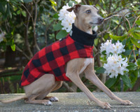 Ruby Red Rover Plaid