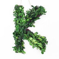 "Modern Home 12"" Real Preserved Boxwood Monogram Wreath Letters, Numbers and Symbols"