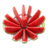 Modern Home Melon Slicer - Medium
