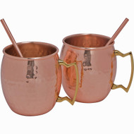 Modern Home Authentic 100% Solid Copper Moscow Mule Straws - Set of 2 - Handmade in India