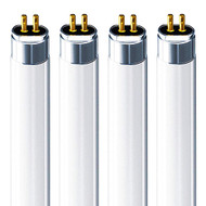 CH Lighting F14T5 6400K 21 in. 14 Watt - T5 Linear Fluorescent Bulbs - Set of 4