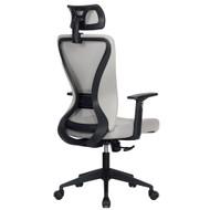 Modern Home Xelo Testa Mid-Back Desk/Office Task Chair, Computer Ergonomic Mesh Back Lumbar Support with Armrests