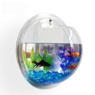 Modern Home Fish Bubble - Deluxe Acrylic Wall Mounted Fish Tank w/Bonuses