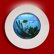 Aussie Aquariums Wall Mounted Aquarium - Porthole White