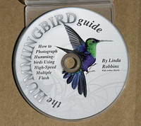 Hummingbird Guide - CD