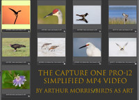 The Capture One Pro-12 Simplified Video