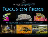 Focus on Frogs