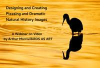 Webinar on Video