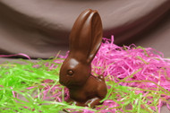 Sugar Free Chocolate Bunny