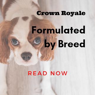 crownblog1.png