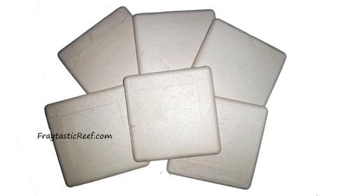Xtra Large Square Coral Frag Disk (6 pack)