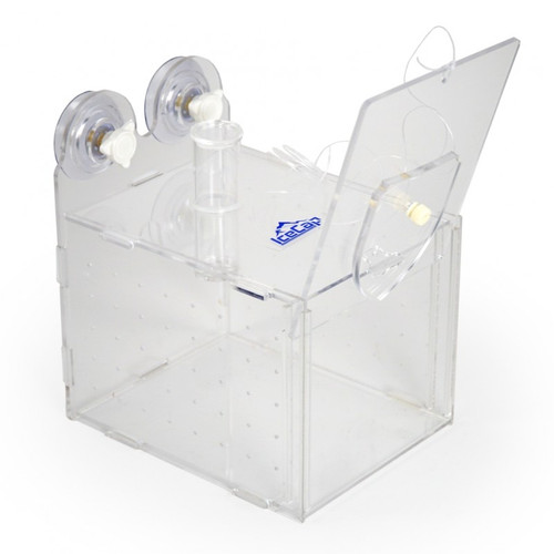 Collapsible Fish Trap Small - IceCap