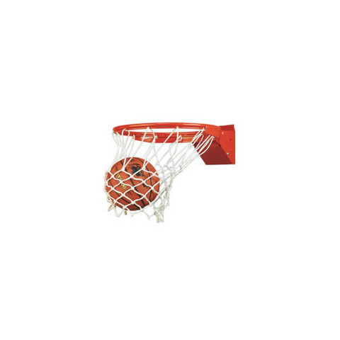 Bison Reaction Adjustable Breakaway Basketball Rim with Net and Official Goal