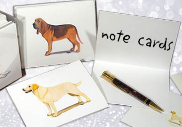 shop note cards