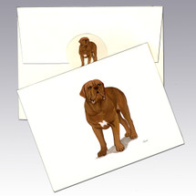 Dogue de Bordeaux Note Cards