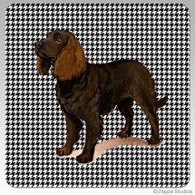 American Water Spaniel Houndzstooth Coasters