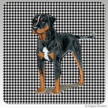 Catahoula Leopard Dog Houndzstooth Coasters