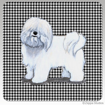 Coton du Tulear Houndzstooth Coasters