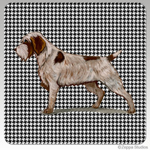 Wirehaired Pointing Griffon Houndzstooth Coasters