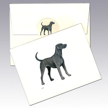 Lacy Dog Note Cards
