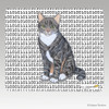 Tabby Cat Binary Code Mouse Pad