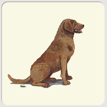Chesapeake Bay Retriever Beverage Coasters
