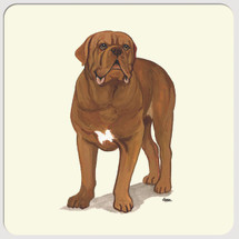 Dogue de Bordeaux Beverage Coasters