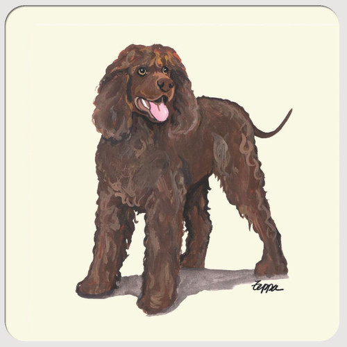 Irish Water Spaniel Beverage Coasters