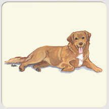 Nova Scotia Duck Tolling Retriever Beverage Coasters