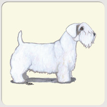 Sealyham Terrier Beverage Coasters