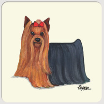 Yorkshire Terrier Beverage Coasters