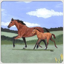Mare and Foal Scenic Coasters
