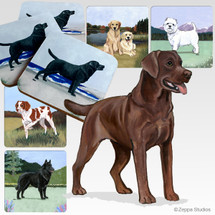 Chocolate Labrador Oval Scenic Coasters