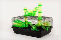 The Landmark Cage with Accessories 580x380x290 - Green
