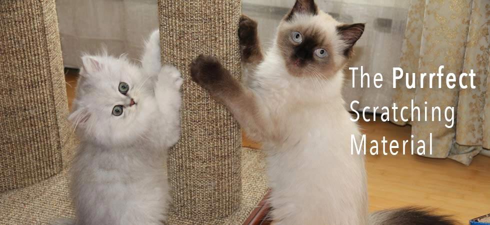 Purrfect Post Sisal Cat Scratching Posts - Veterinarian Designed